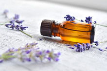 Organic Lavender Essential Oil...