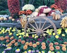 Flower Garden Decoration With ...