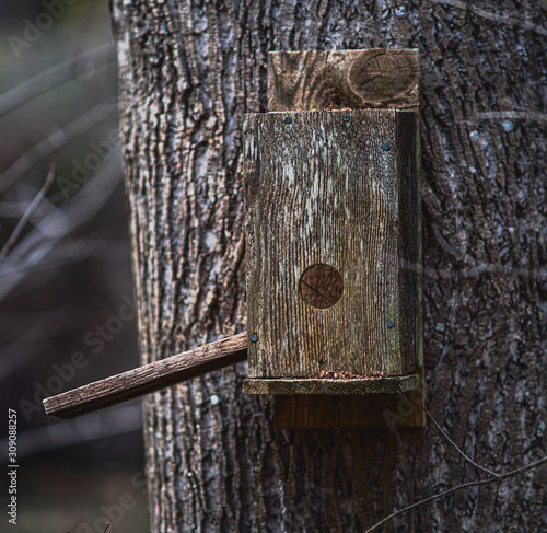 Photo An old wooden birdhouse affixed to a tree trunk