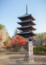 Five-storied Pagoda And Wooden...
