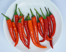 Organic Red Chili Pepper On A White Plate