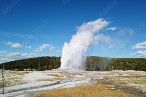 Tablou Canvas Old Faithful geyser erupting in fall, Yellowstone National Park, WY