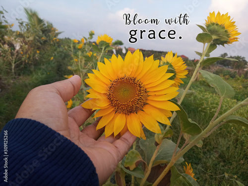 Photo Inspirational motivational quote - Bloom with grace
