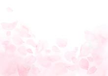 ふわふわしたピンクの...