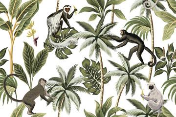 Fototapeta Egzotyczne Tropical vintage monkey, palm trees, banana tree floral seamless pattern white background. Exotic jungle wallpaper.
