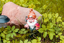 Figure Of A Garden Gnome In Th...