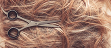 Hair Close-up, Background. Fla...
