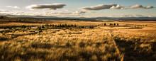 Sunset On Scottish Landscape, Aviemore, Scotland, United Kingdom
