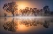 canvas print picture - Goldener Morgen