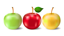 Three Apples Isolated On White Background. Vector Illustration