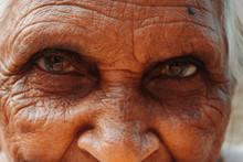 Closeup Shot Of The Eyes Of An...