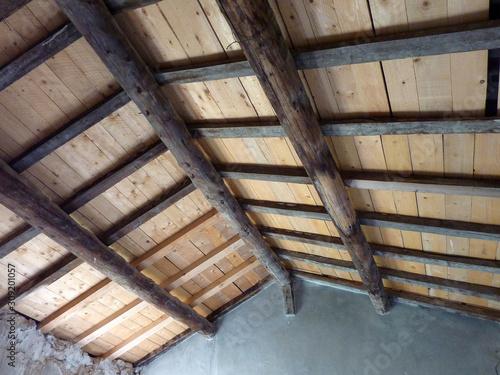 Fototapeta plafond de dbois obraz na płótnie