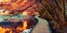 Infrared Filtered View Of Plitvice Lakes National Park. Splendid Summer Scene With Footbridge On The Pure Water Lake. Picturesque Countryside View Of Croatia, Europe.