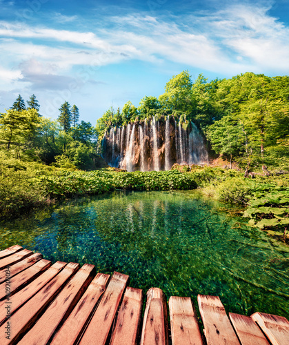 Fototapeta Spectacular summer scene of green forest with pure water waterfall in Plitvice Lakes National Park. Colorful countryside landscape of Croatia, Europe. Traveling concept background. obraz