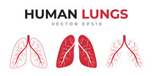 Human Lungs. Set Of Icons And Medical Symbols, Human Lungs With Abstract Structure