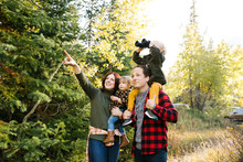 Family Sightseeing In Forest