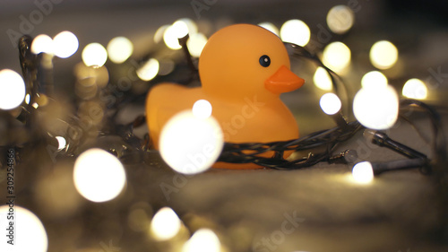 Slika na platnu Close-up shot of rubber duck on background of christmas garland on a playd