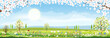 Panorama view of spring field with cherry blossom border, Vector cartoon Spring or Summer landscape fram field with hills and wild flowers, Eco village, Organic farming concept