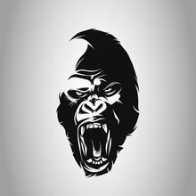 Gorillas, Ape, Gorilla Gorilla...