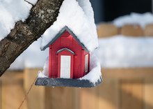 Bird House Has Been Covered With Fresh Snow