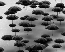 Group Of Umbrellas On Pavement