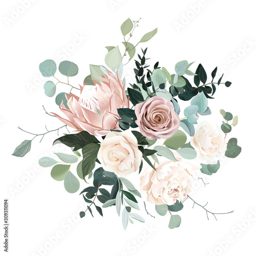 Silver sage and blush pink flowers vector design bouquet. Fototapeta