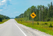 Empty Road View, With A Warning For Moose Crossing The Road Sign With Transmission Towers And Pine Trees Forest On The Roadside