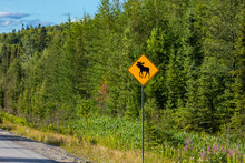Warning For Moose Crossing Sig...