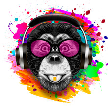 Colorful Artistic Monkey In Ey...