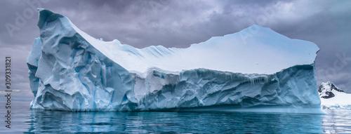 Stampa su Tela Antarctica