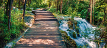Panoramac View Of Wooden Pathw...
