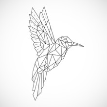 Abstract Polygon Hummingbird. ...