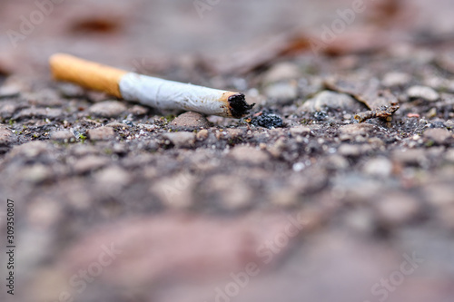 Fotografia, Obraz A thrown away used cigarette end with filter is lying on the ground on a footpath in winter