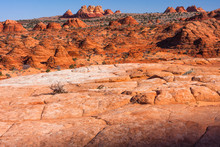 The Wildly Varied Landscape Of North Coyote Buttes.
