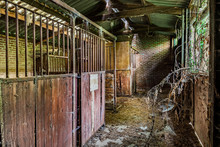 Abandoned Horse Stable