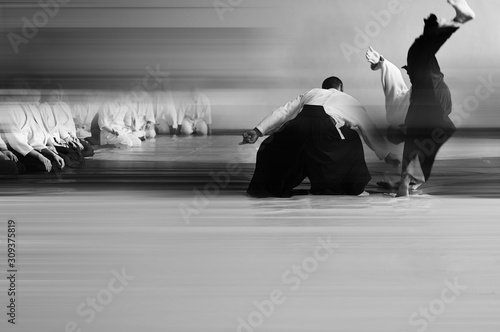 blurred background people are practicing aikido Canvas Print