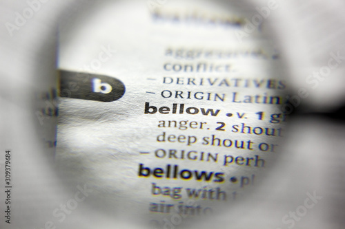 The word or phrase bellow in a dictionary. Canvas Print