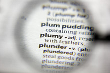 The Word Or Phrase Plumy In A ...
