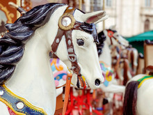 Horse Of The Carousel