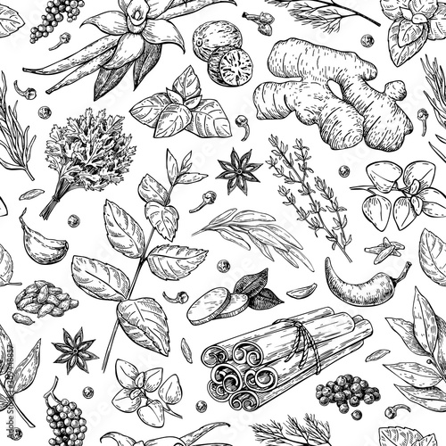 Herbs and spice seamless pattern. Vector drawing background.