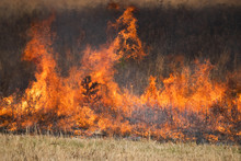Flames From A Controlled Burn