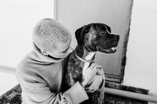 Boxer Dog And Owner