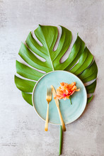 Tropical Theme With Orange Flower