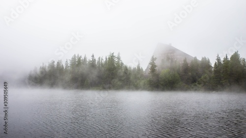 Fotografía  Lake near the forest covered with the dense fog