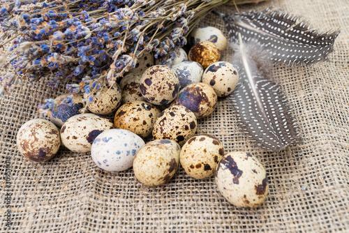 Foto quail eggs  on dark old  background