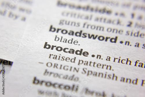 Cuadros en Lienzo  Word or phrase Brocade in a dictionary.