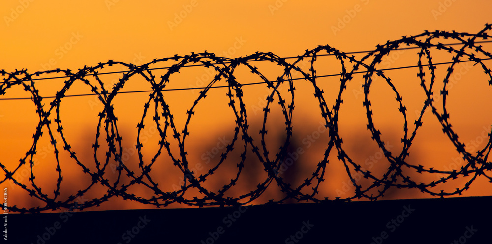 Fototapeta barbed wire on the fence against the backdrop of the sunset.