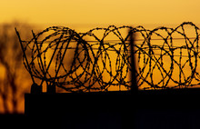 Barbed Wire On The Fence Against The Backdrop Of The Sunset.
