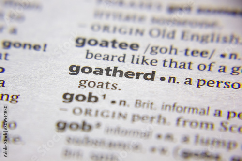 Fotografie, Tablou Word or phrase Goatherd in a dictionary.