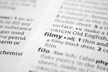 Word Or Phrase Filmy In A Dict...